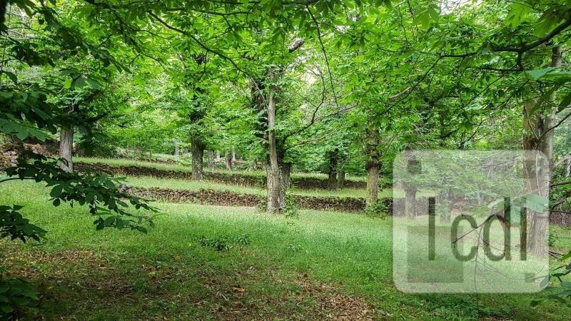 Vente terrain Thueyts 162000€ - Photo 2