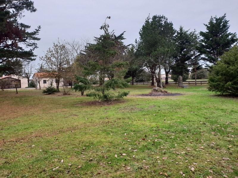 Vente maison / villa Brem-sur-mer 468000€ - Photo 20