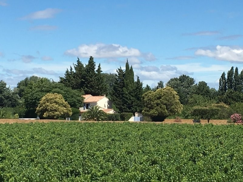Verkauf haus Arles 317000€ - Fotografie 1