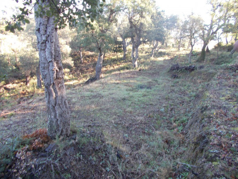 Vente terrain Montesquieu des alberes 155 520€ - Photo 4