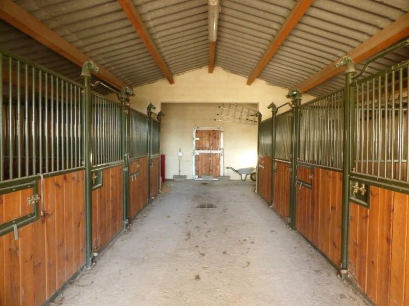Immobile residenziali di prestigio casa Uzes 1590000€ - Fotografia 5
