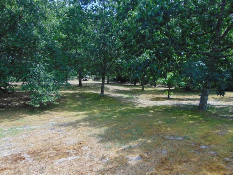 Vente terrain Saint paul les dax 59000€ - Photo 1