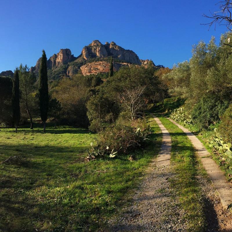 Location vacances maison / villa Roquebrune sur argens 2000€ - Photo 1