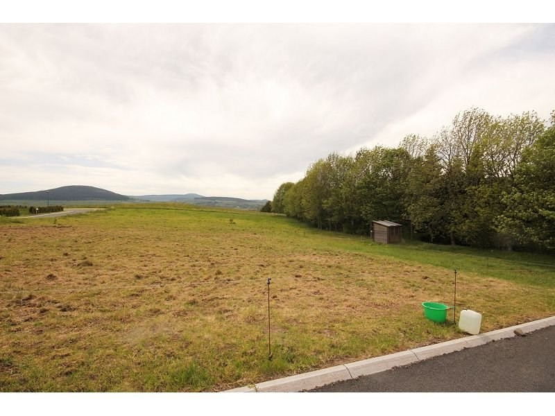 Vente terrain Fay sur lignon 15000€ - Photo 1