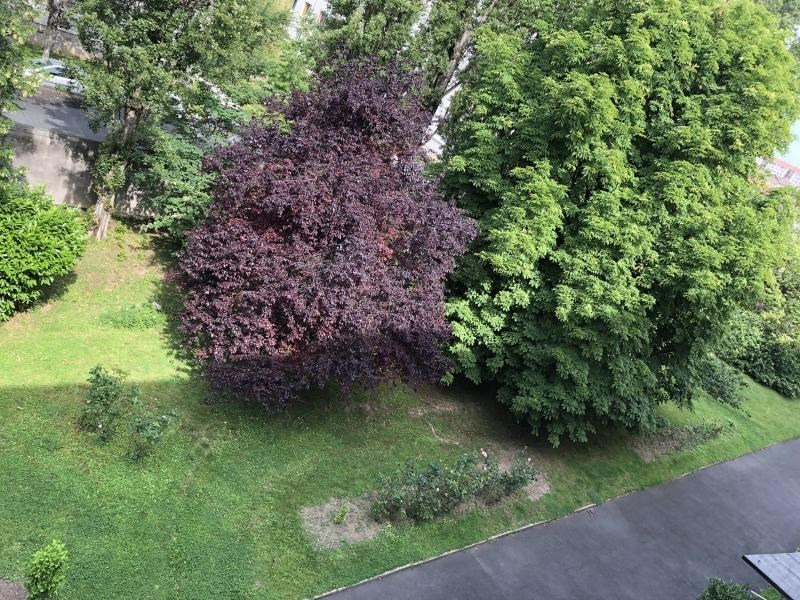 Sale apartment Champigny sur marne 231500€ - Picture 6