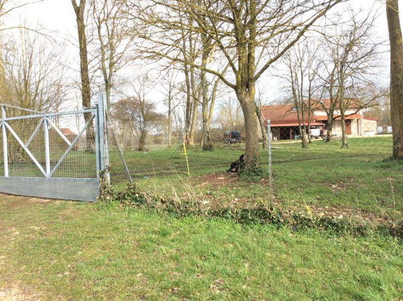 Vente maison / villa Colombey-les-belles 183000€ - Photo 8