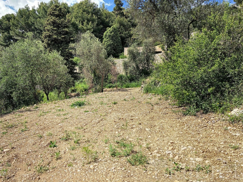 Vente terrain Castellar 520000€ - Photo 3