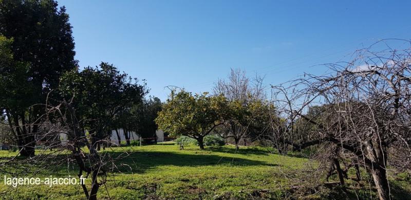Vente terrain Bastelicaccia 160000€ - Photo 4