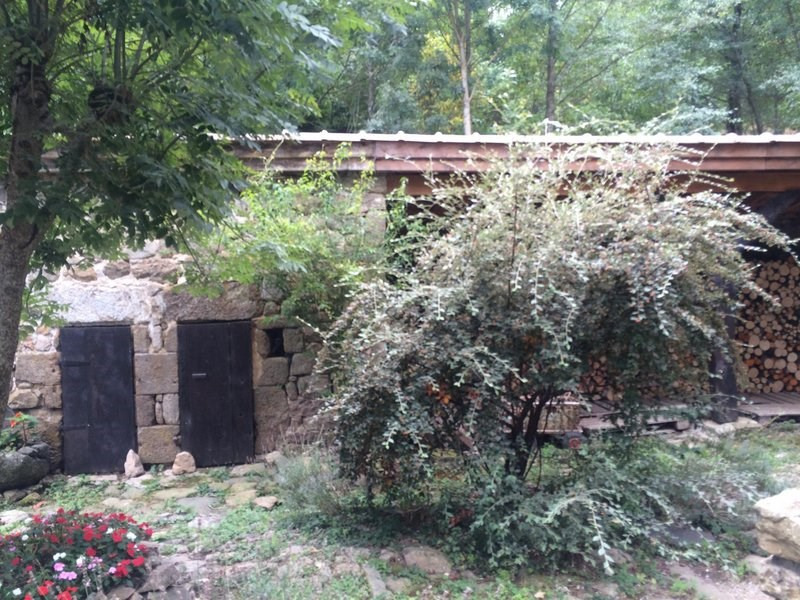 Sale house / villa Chanas 399000€ - Picture 4