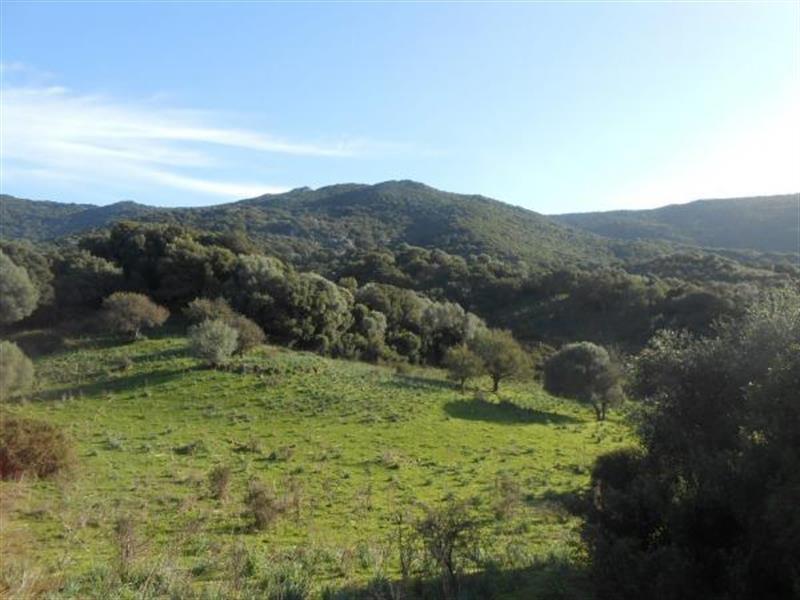 Vente terrain Sollacaro 575000€ - Photo 8