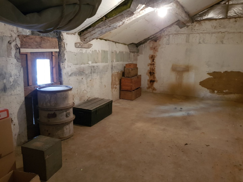 Vente maison / villa Les côtes-d'arey 449500€ - Photo 15