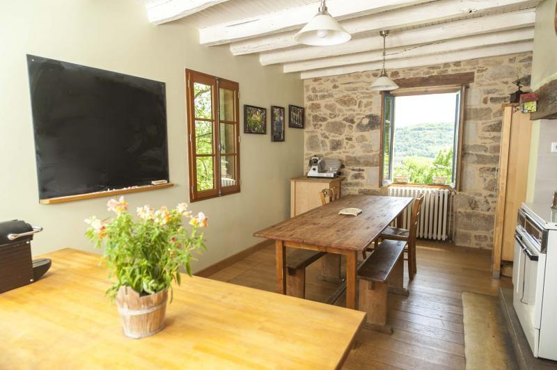 Sale house / villa Terrasson lavilledieu 472500€ - Picture 9
