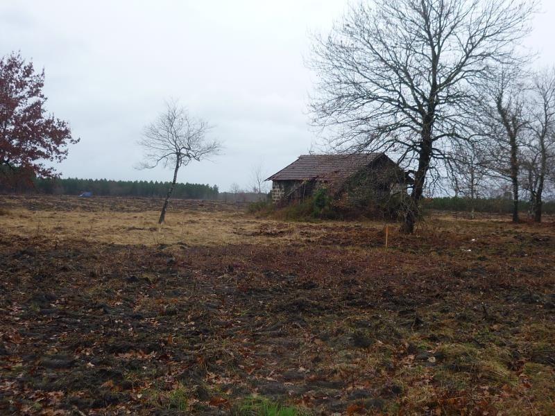 Sale house / villa Rion des landes 110000€ - Picture 1