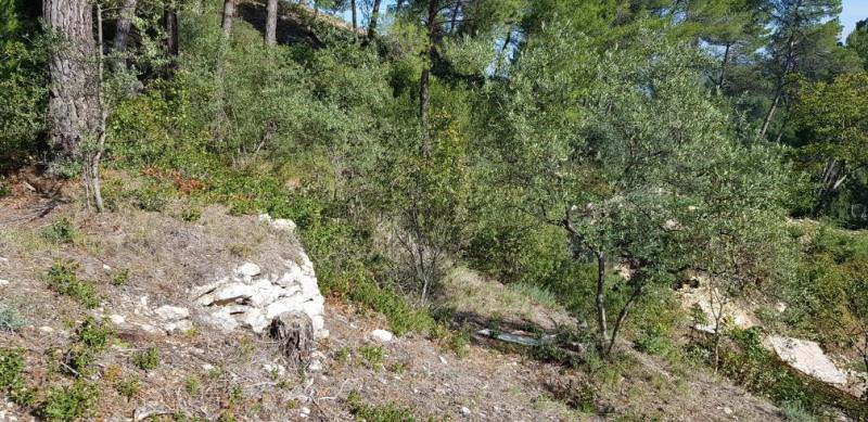 Revenda terreno Meyrargues 215000€ - Fotografia 3