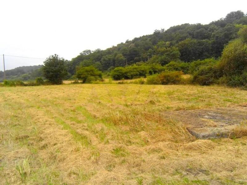 Vente terrain Sauveterre-de-béarn 66000€ - Photo 6