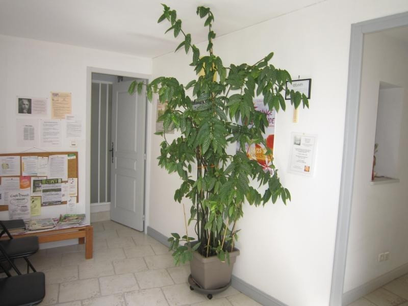 Location appartement St cyprien 430€ CC - Photo 1