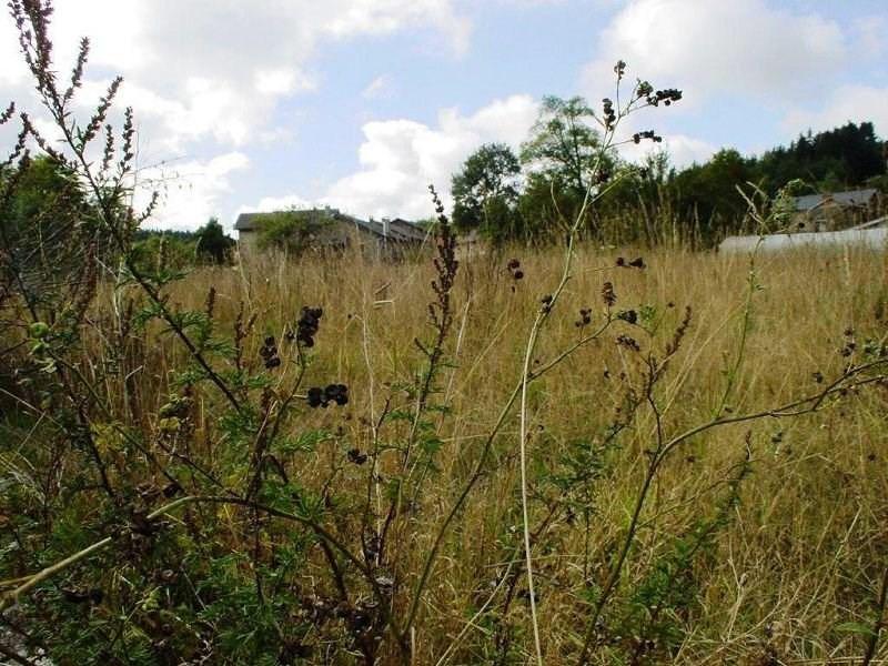 Vente terrain St jeures 35000€ - Photo 2