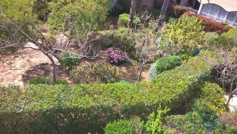 Vente maison / villa La londe les maures 319500€ - Photo 9
