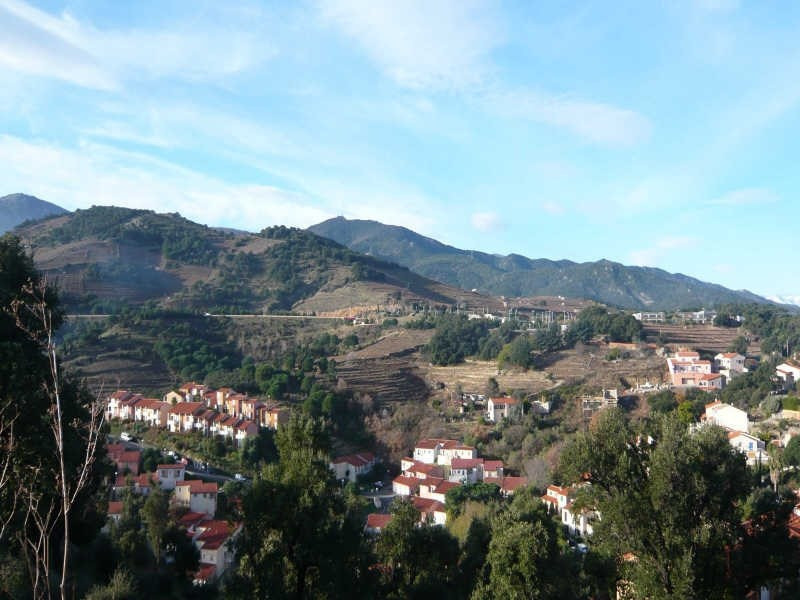 Vente terrain Collioure 199 000€ - Photo 4