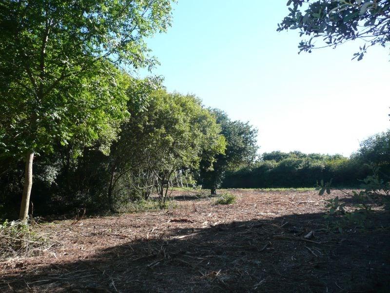 Vente terrain Cleden cap sizun 46950€ - Photo 4