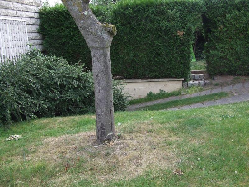 Vente maison / villa Saint etienne du rouvray 170000€ - Photo 36