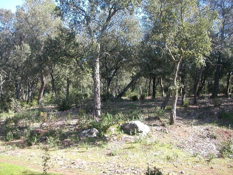 Vente terrain Le cannet des maures 135 000€ - Photo 1