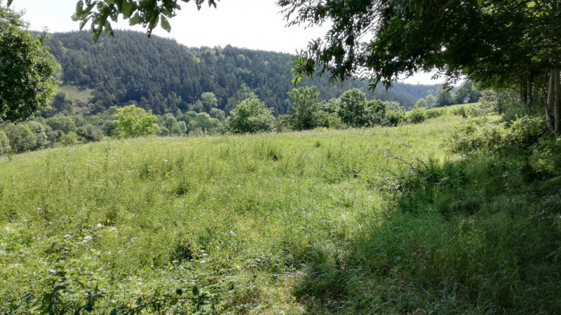 Vente terrain Chadron 49 000€ - Photo 5