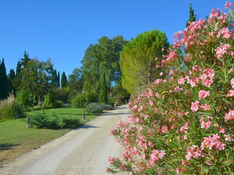 Deluxe sale house / villa Arles 2 180 000€ - Picture 3