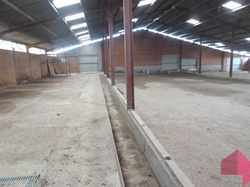 Location local commercial Caraman 1200€ CC - Photo 4