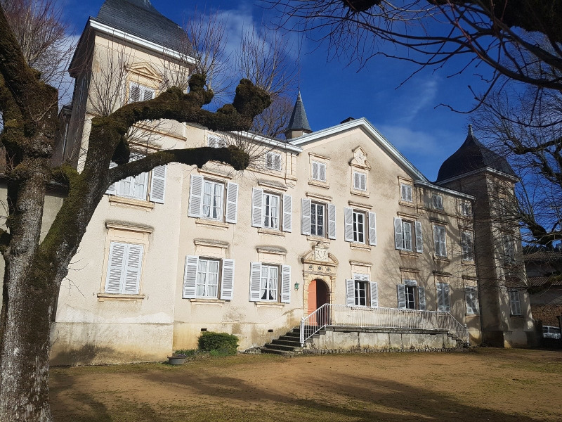 Deluxe sale house / villa St laurent de chamousset 790000€ - Picture 3