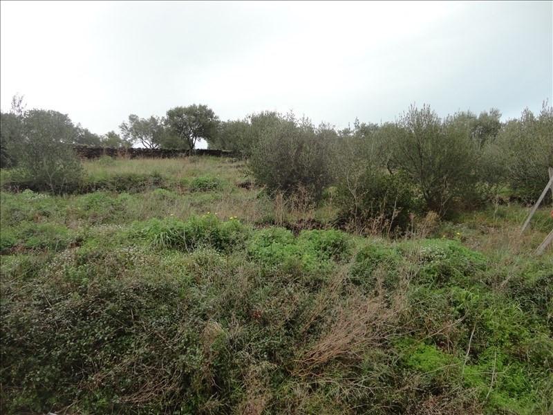 Vente terrain Collioure 255000€ - Photo 2