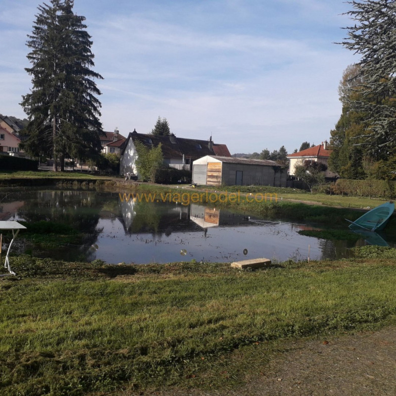 Life annuity house / villa Baume-les-dames 32500€ - Picture 12