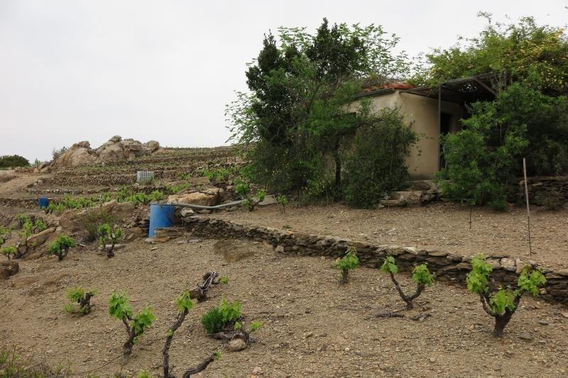 Venta  terreno Collioure 70000€ - Fotografía 4