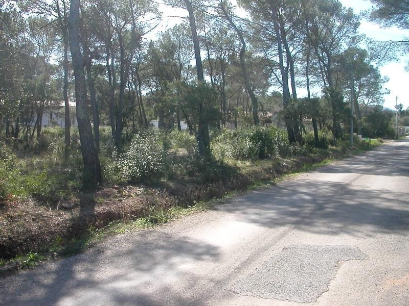 Sale site Le cannet des maures 169 000€ - Picture 5