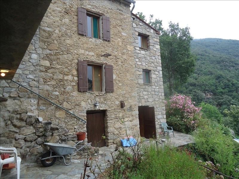 Vente maison / villa Corsavy 363000€ - Photo 7