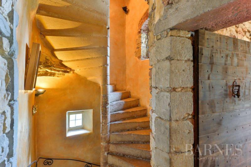 Vente de prestige château Lyon 5ème 3950000€ - Photo 6