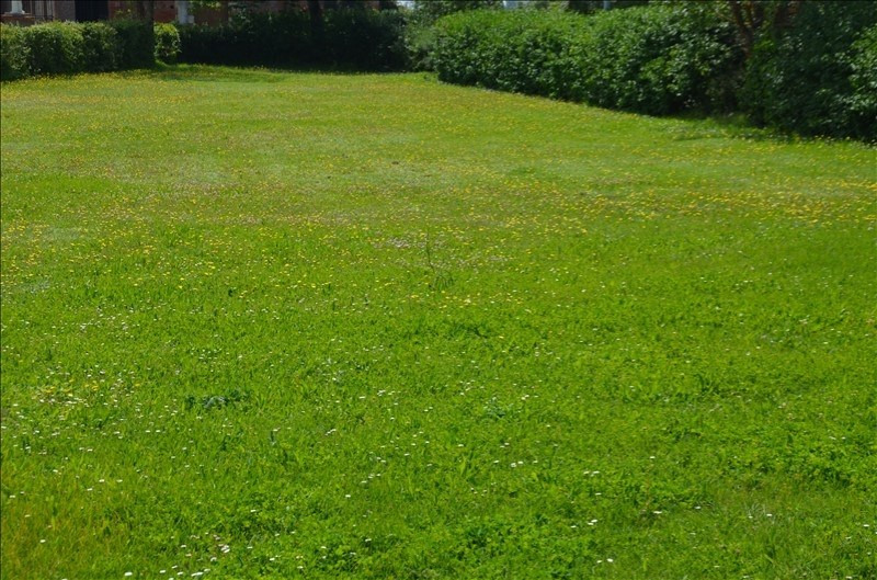 Vente terrain Labastide beauvoir (4 min) 128 500€ - Photo 2