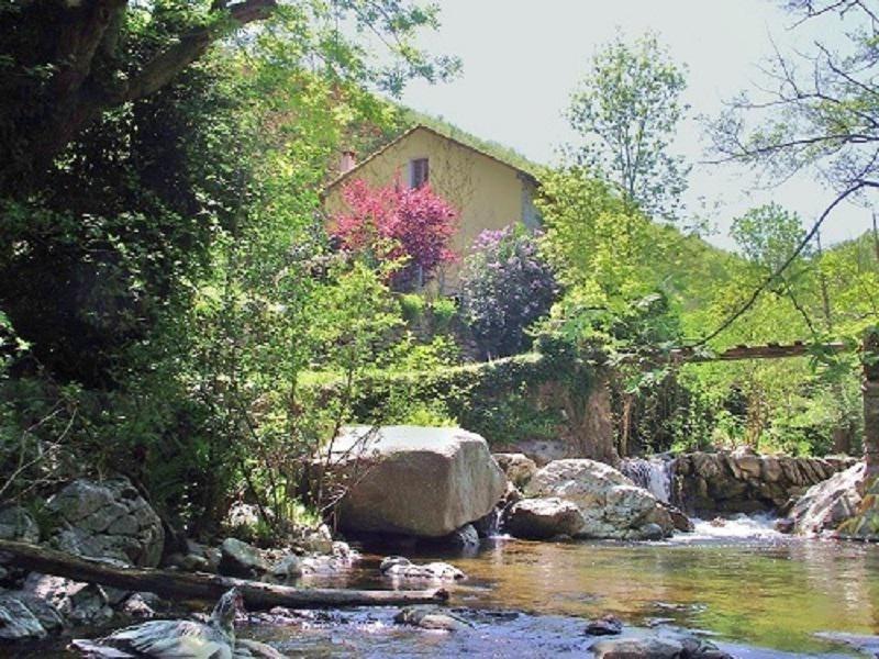 Vente maison / villa Amelie les bains palalda 503000€ - Photo 1