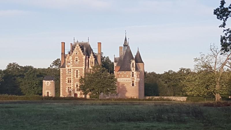 Vente de prestige château Lassay-sur-croisne 2500000€ - Photo 3