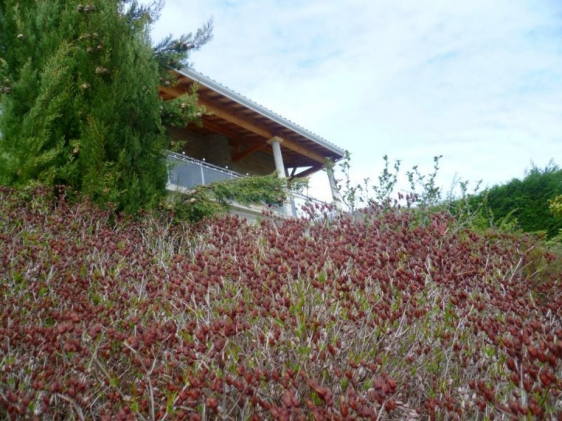 Vente maison / villa Bessenay 399000€ - Photo 12