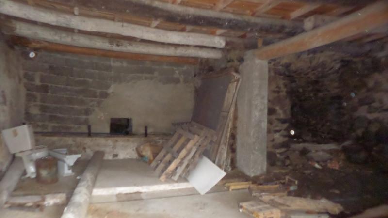 Sale house / villa Le monastier sur gazeille 55000€ - Picture 16