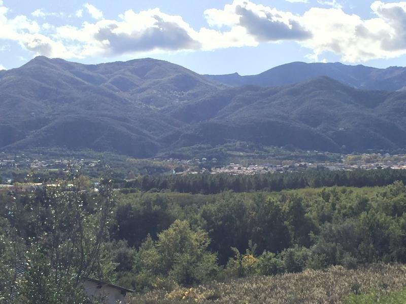 Vente terrain Ceret 38500€ - Photo 8