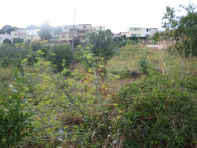 Vente terrain Calenzana 100 000€ - Photo 4