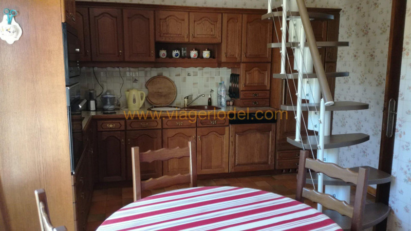 Life annuity house / villa Tournefeuille 85 000€ - Picture 8