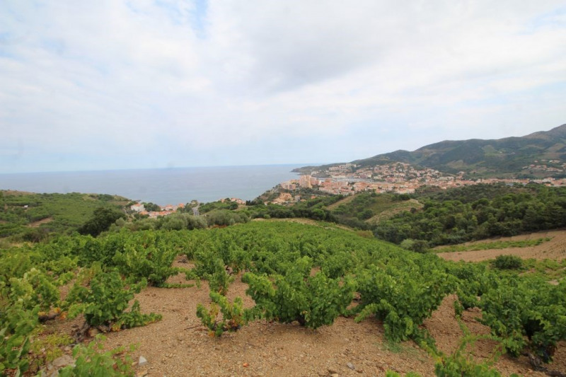 Vente maison / villa Banyuls sur mer 110000€ - Photo 3