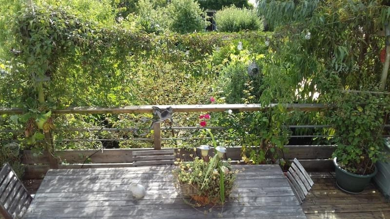 Sale house / villa St brieuc 249755€ - Picture 8
