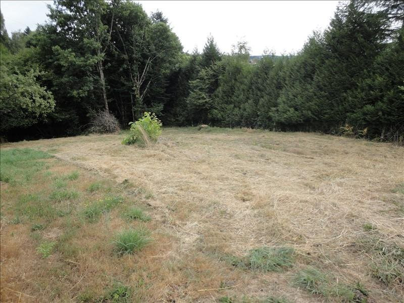 Vente terrain Saint-priest-taurion 22 500€ - Photo 2