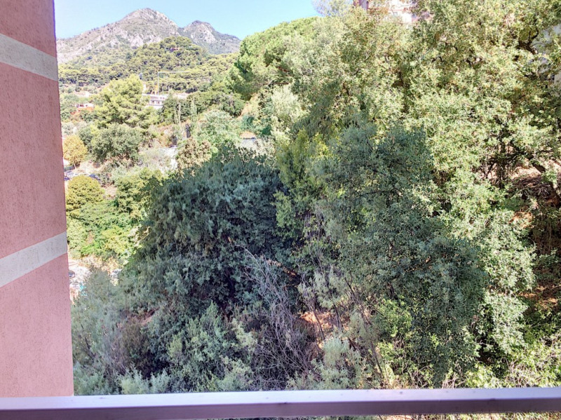 Vente appartement Menton 240 000€ - Photo 14
