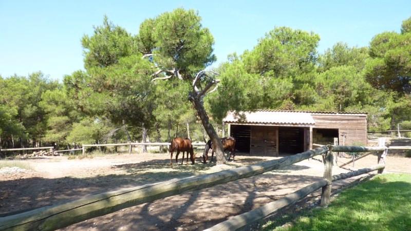 Vente de prestige maison / villa Lambesc 745000€ - Photo 4