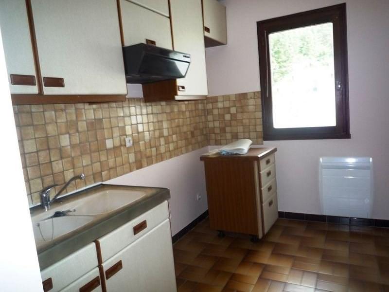 Location appartement Le chambon sur lignon 440€ CC - Photo 4